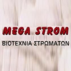 MEGA STROM